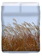 Pampas Grass In The Wind 1 Duvet Cover