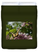 Papilio Glaucus   Eastern Tiger Swallowtail  Duvet Cover