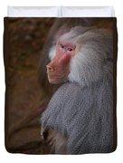 Papio Hamadryas Baboon Duvet Cover
