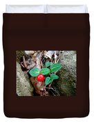 Partridge Berry Berry - Mitchella Repens Duvet Cover