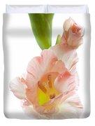 Peach Flushed Gladiolus Duvet Cover