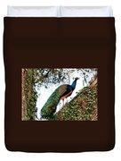 Peacock Calling Duvet Cover