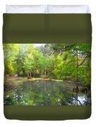 Peacock Springs State Park Duvet Cover