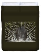Peacock Tail Graphic Duvet Cover