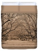Pecan Orchard Duvet Cover