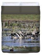 Pelicans At Knuckey Lagoon Duvet Cover
