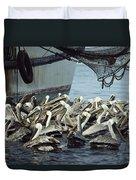 Pelicans Float In Water Near A Shrimp Duvet Cover