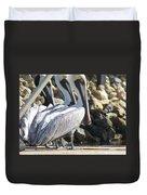 Pelicans Of Keaton Beach Canal Duvet Cover