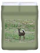 Pennsylvania White Tail Deer Duvet Cover