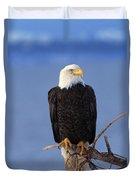 Perched Bald Eagle Duvet Cover
