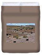 Petrified Forest National Park 2 Duvet Cover
