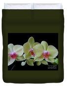 Phalaenopsis Fuller's Sunset Orchid No 1 Duvet Cover