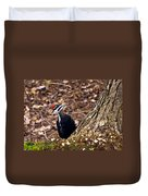 Pileated Woodpecker 3 Duvet Cover