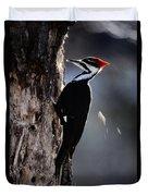 Pileated Woodpecker Dryocopus Pileatus Duvet Cover
