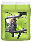 Pine Siskin Finch Baby Duvet Cover