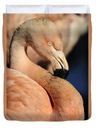 Pink Flamingo 8 Duvet Cover