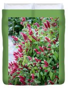 Pink Shrimp Plant Duvet Cover