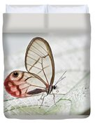 Pink-tipped Clearwing Satyr Cithaerias Duvet Cover