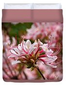 Pinxterflower Azalea Duvet Cover