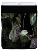 Pitcher Plant Inside The National Orchid Garden In Singapore Duvet Cover