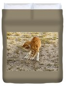 Playful Yellow Kitty Duvet Cover