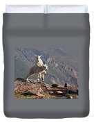 Playtime On The Brink Duvet Cover