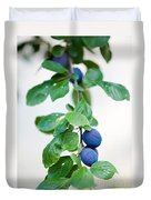Plum Tree Duvet Cover