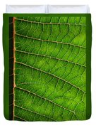 Poinsettia Leaf IIi Duvet Cover