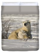 Polar Bear With Cub, Watchee Duvet Cover