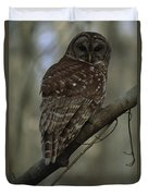 Portrait Of A Barred Owl Perched Duvet Cover