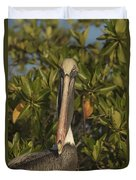 Portrait Of A Brown Pelican Pelecanus Duvet Cover