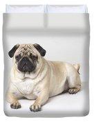Portrait Of A Pug Dog Duvet Cover