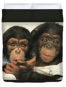 Portrait Of Two Young Laboratory Chimps Duvet Cover