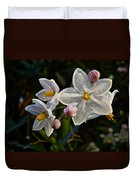 Potato Vine Blossom Duvet Cover
