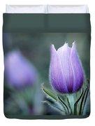 Prairie Crocus Anemone Patens Duvet Cover