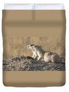Prairie Dog Pair Grasslands Np Duvet Cover