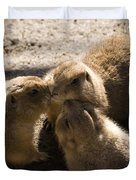 Prairie Dog Gossip Session Duvet Cover