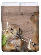 Prairie Dogs Duvet Cover