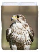 Prairie Falcon Perches On The Ground Duvet Cover