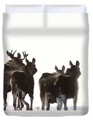 Prairie Moose Saskatchewan Duvet Cover