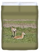 Pronghorn Antelope With Young Duvet Cover