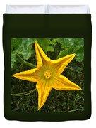Pumpkin Flower 1 Duvet Cover