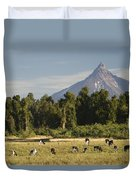 Puntiagudo Volcano In The Background Duvet Cover