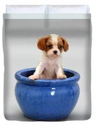 Puppy In A Pot Duvet Cover by Jane Burton