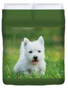 Puppy West Highland White Terrier Duvet Cover