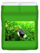 Purple And Blue Hummingbird  Duvet Cover