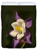 Purple And White Columbine Blossom Facing The Sun - Aquilegia Duvet Cover