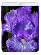 Purple And White Stiped Iris Duvet Cover