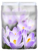 Purple Crocus Blossoms Duvet Cover