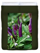 Purple Pepper Life Cycle  Duvet Cover